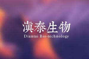 楚雄滇泰生物技术有限公司