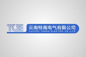 云南特高电气有限公司
